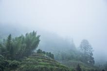Berg landskap i regn och dimma