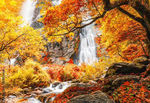 Beautiful waterfall in autumn forest with red and yellow leaves