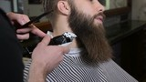 Beard trimming process from professional hairdresser