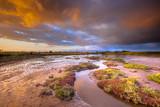Tidal Channel in Estuary marshland at sunrise