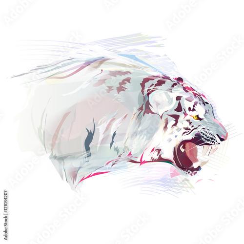 White Tiger, Watercolor Illustration - 121034207