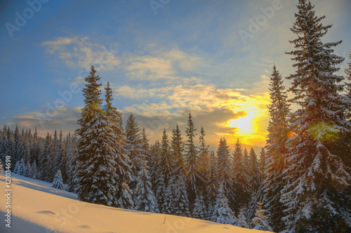 Obraz Winter landscape on a sunset.