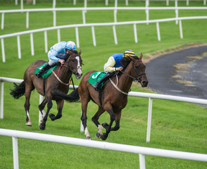 Two jockeys and race horses competing on the track