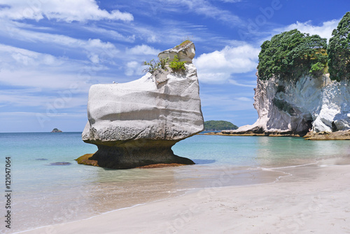 Fotobehang Cathedral Cove Cathedral Cove beach on Coromandel Peninsula, North Island of New Zealand.
