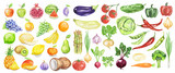 Fototapety Watercolor fruit and vegetables set. Juicy and colorful fruit on white background including apples, coconut, lime, tomatoes, cucumber and more. Vegetarian diet food with vitamins.