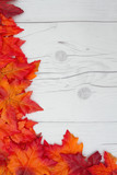Autumn Time Background