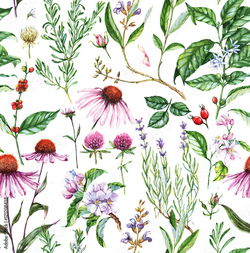 Hand-drawn watercolor seamless botanical pattern with different plants. Repeated natural background with meadow and medical plants: echinacea, coffe, lavender etc. - 121208438
