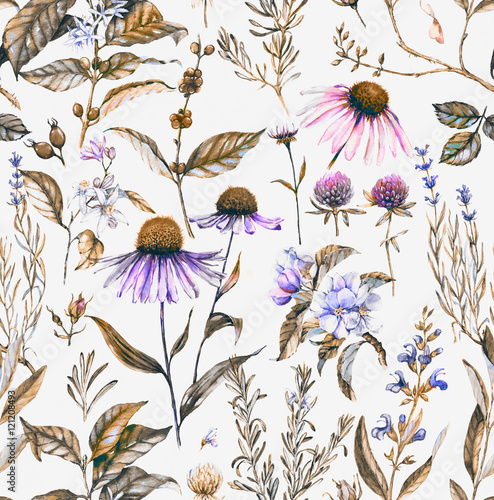 Hand-drawn watercolor seamless botanical pattern with different plants. Repeated natural background with meadow and medical plants: echinacea, coffe, lavender etc. - 121208493