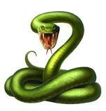 snake - 121227296