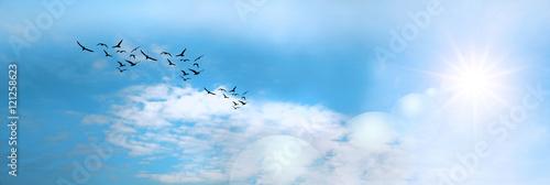 panoramica de un cielo azul y el sol