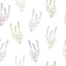 Lavender flower sketch graphic art seamless pattern illustration vector