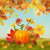 Vector Autumn Thanksgiving Card