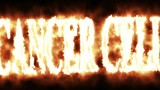 animation - word cancer cell in fire