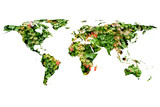 world map and leaves