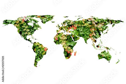 Fotobehang Wereldkaarten world map and leaves