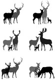 set of silhouettes of deer family and a couple of deer, vector illustration