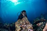 Scuba diver underwater near stone fish in the ocean