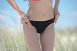 Woman with flat stomach wear bikini, close up photo on hips, standing among ammophila plants