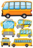 Different design of school bus