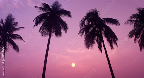 Papiers peints Rose banbon Silhouette of Tropical Coconut Trees during Sunset or Sunrise at the Island, Romantic Scenery