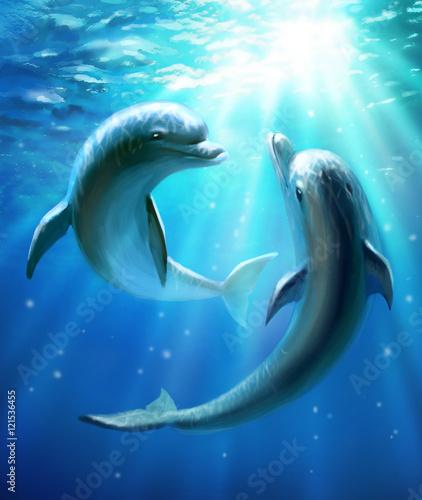 Fototapeta Dolphins