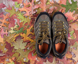 New hiking boots on autumn leaves and wood