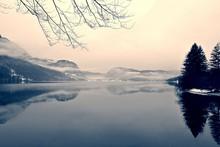 Paisaje de invierno cubierto de nieve en el lago en blanco y negro. imagen monocroma filtrada en retro, estilo de la vendimia con enfoque suave, filtro rojo y el ruido; concepto nostálgica de invierno. Lago Bohinj, Eslovenia.