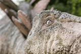Great life-size figures stegosaurus.