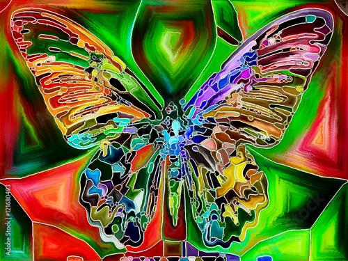 colores-de-la-mariposa