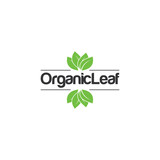 Organic Leaf Creative Concept Logo Design