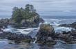 West coast Vancouver Island near Ucluelet British Columbia Canada