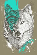 Zentangle stylizowane wilk splatters farby, Ręcznie rysowane ilustracji