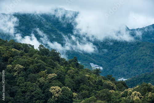 Mountains in tropical rainforest valley landscape with fog at Mo - 121710419