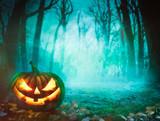 Fototapety Halloween pumpkin in forest