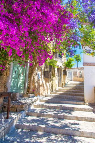 Fototapeta Street with flower of Capoliveri village in Elba island, Tuscany, Italy, Europe.