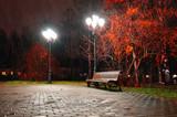 Autumn night landscape of night autumn park under falling rain