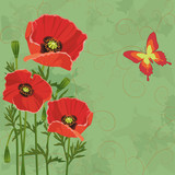 Floral vintage background with poppies and butterfly