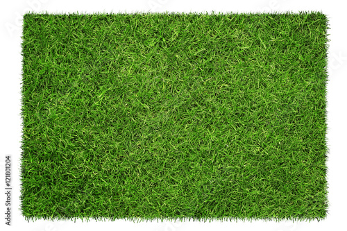 Close up of green grass texture isolated on white