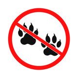 no dog paw