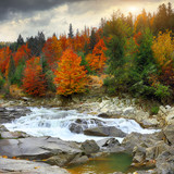 Fototapety View of mountain river at autumn time