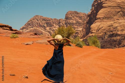 Stylish girl wearing trendy hat and long dress enjoying life, amazing landscape Poster