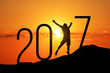 silhouette man jumping over 2017