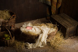 Baby doll in nativity scene