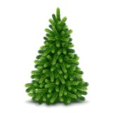 Fototapety Christmas tree, detailed vector illustration