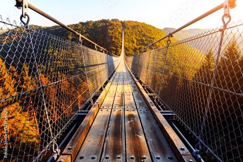 Hängeseilbrücke Geierlay im Hunsrück - 121954628
