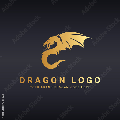 Dragon logo template.