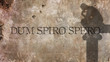 Dum spiro spero. A Latin phrase that means means While I breathe, I hope.