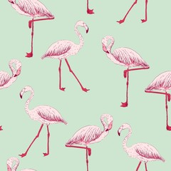 vector sketch of a flamingo. hand drawn seamless pattern