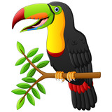 Funny toucan bird cartoon on branch - 122022665