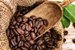 Roasted coffee beans in burlap sack with old wooden scoop